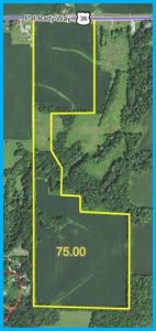 75 TOTAL ACRES - 62 TILLABLE ACRES @ Lawson & Co. Auction Gallery | Danville | Indiana | United States