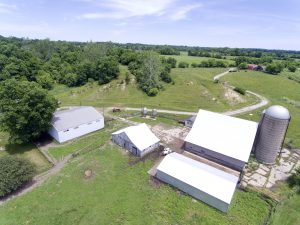 215+ ACRES - TILLABLE - PASTURE - WOODS - CREEKS - POND - HOUSE @ Lawson & Co. Auction Gallery | Danville | Indiana | United States